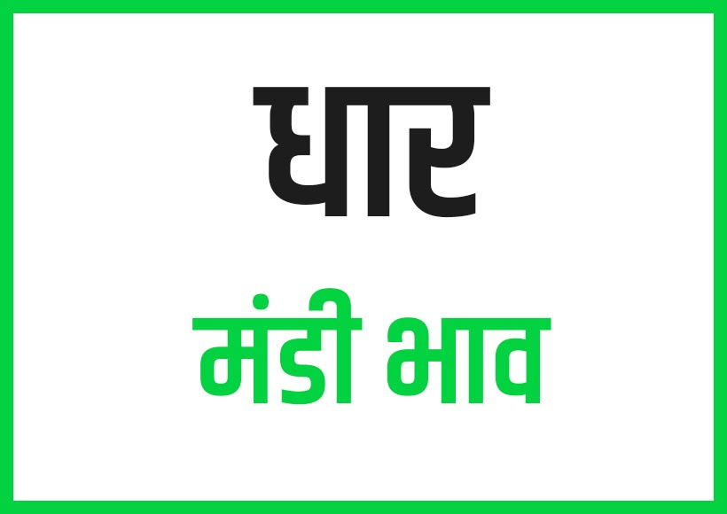 Dhar Mandi Bhav Rates