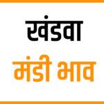 Khandwa Mandi Bhav