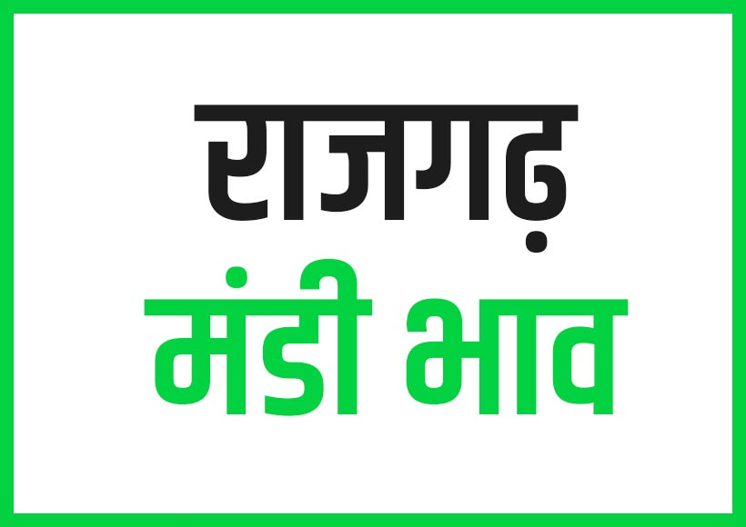 Rajgarh Mandi Bhav राजगढ़ मंडी भाव