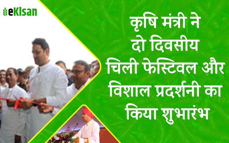 agriculture-minister-sachin-yadav-inaugrate-chilli-festival-at-kasrawad-khargone