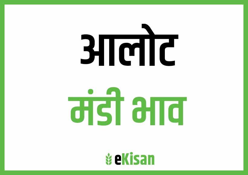 Alot Mandi Bhav