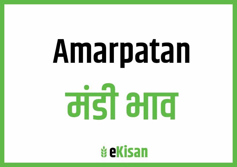 Amarpatan Mandi Bhav