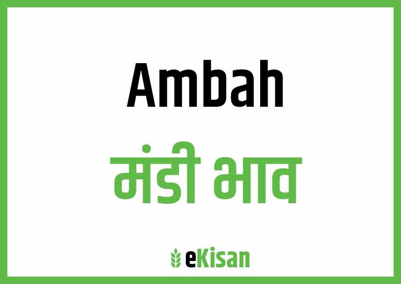 Ambah Mandi Bhav