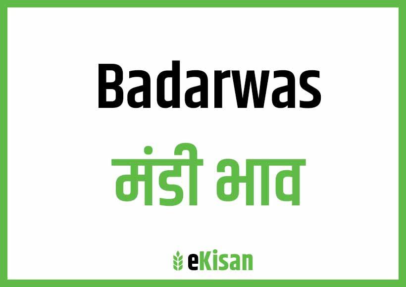 Badarwas Mandi Bhav