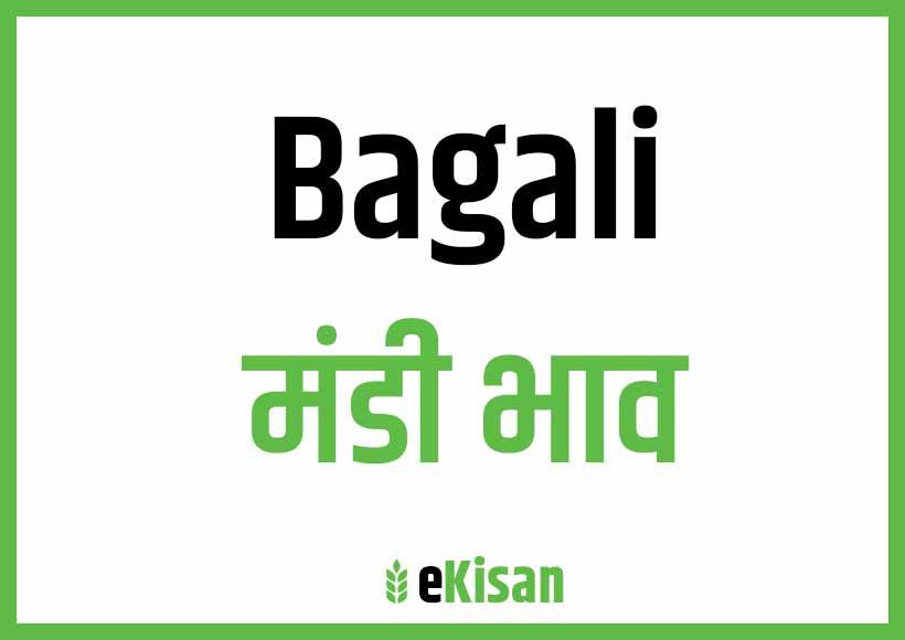 Bagali Mandi Bhav