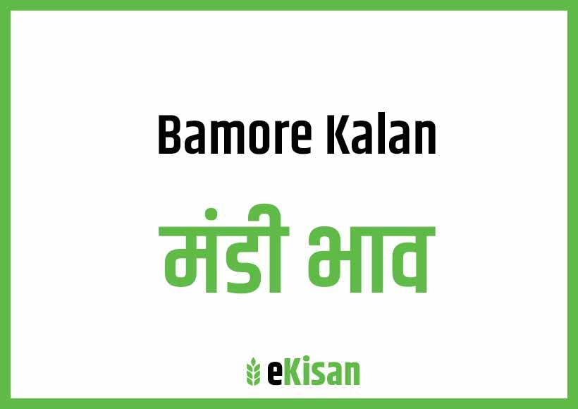 Banmore Kalan Mandi Bhav