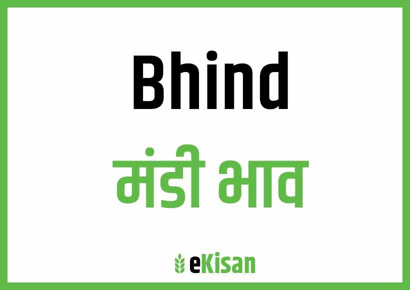 Bhind Mandi Bhav