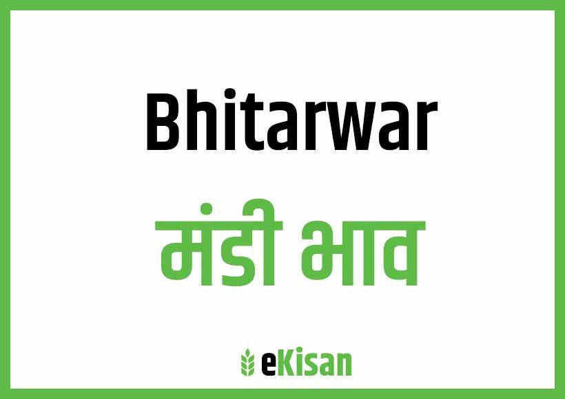 Bhitarwar Mandi Bhav