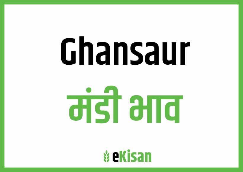 Ghansaur Mandi Bhav