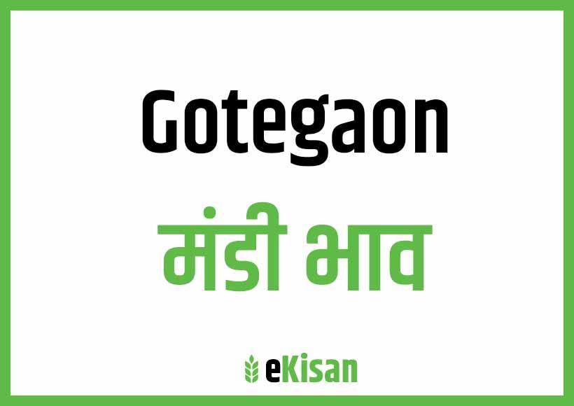 Gotegaon Mandi Bhav