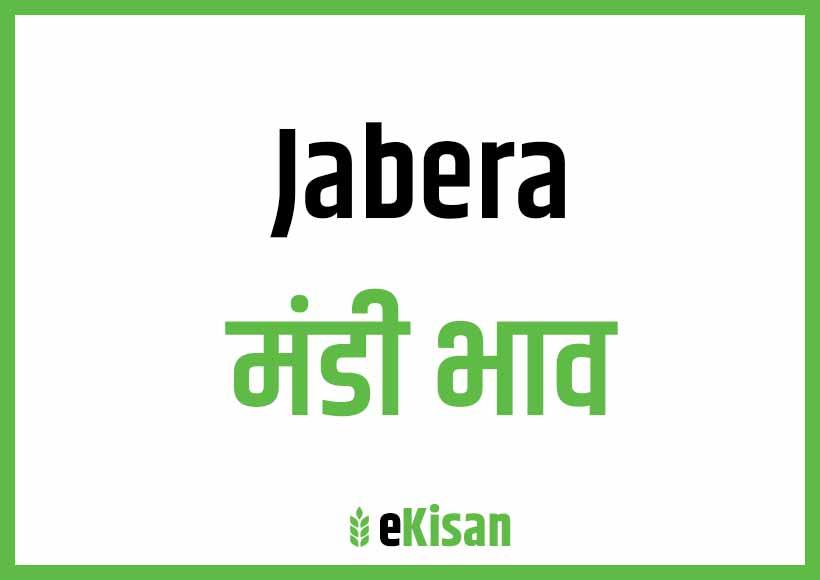 Jabera Mandi Bhav