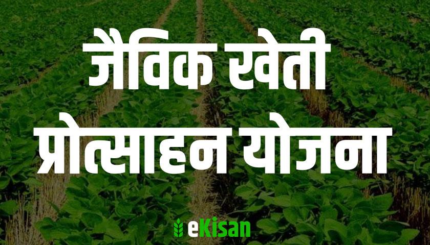 jaivik-kheti-protsahan-yojana