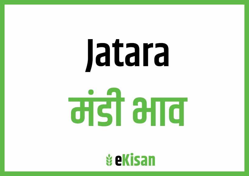 Jatara Mandi Bhav