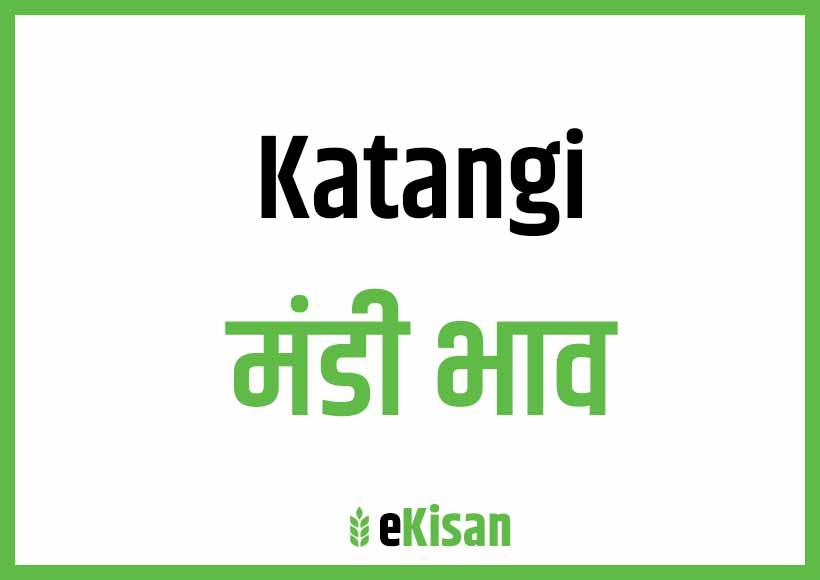 Katangi Mandi Bhav
