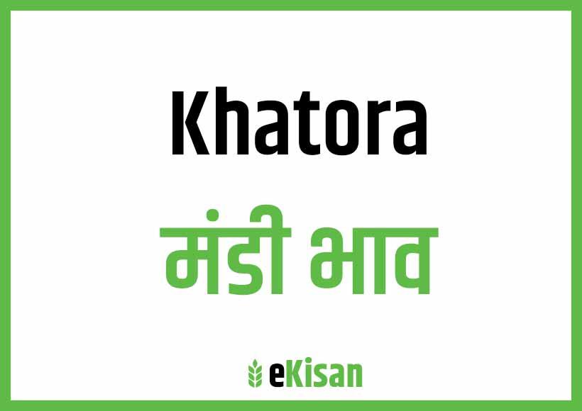 Khatora Mandi Bhav