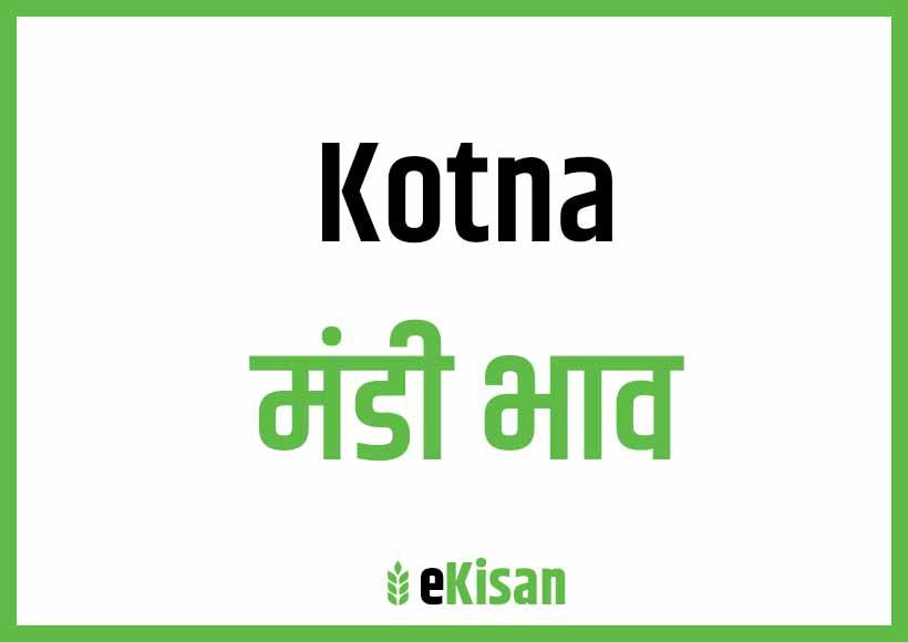 Kotna Mandi Bhav