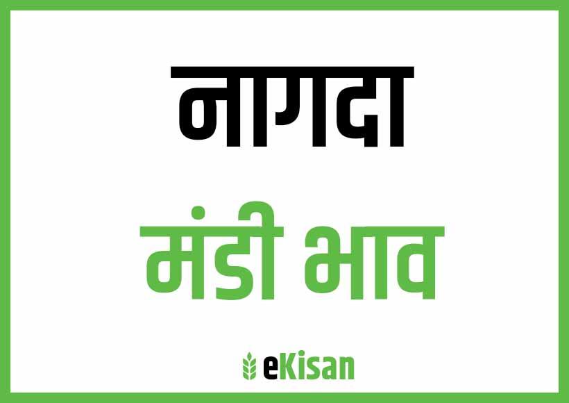 Nagda Mandi Bhav