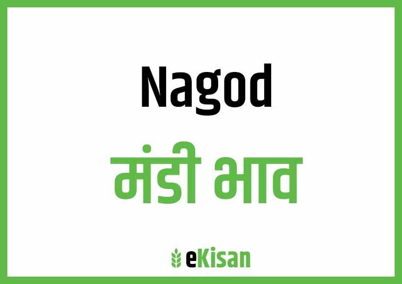 Nagod Mandi Bhav