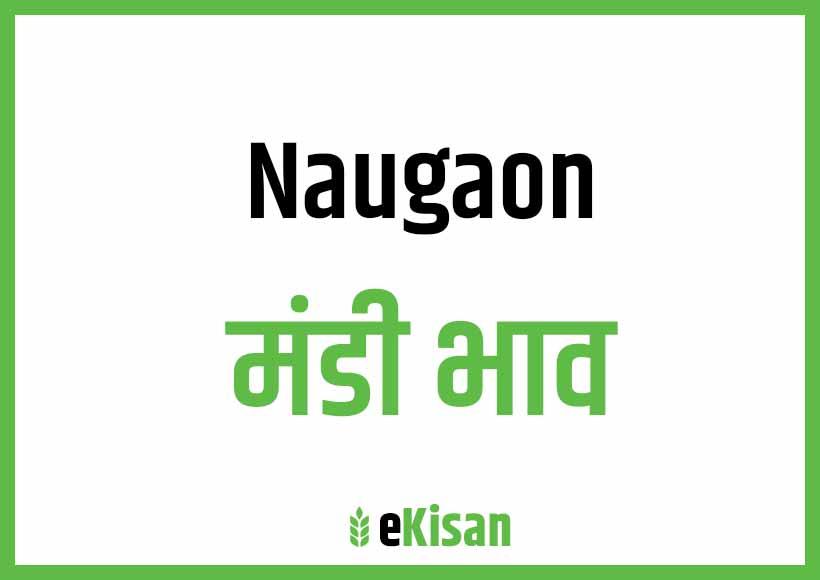Naugaon Mandi Bhav