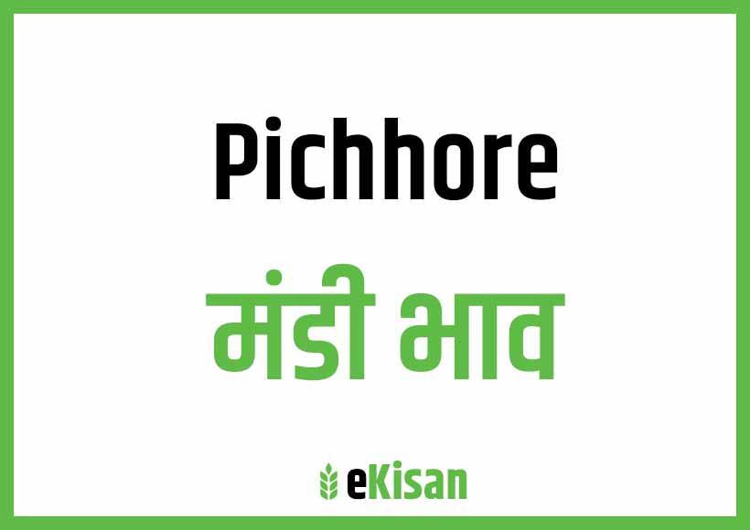 Pichhor Mandi Bhav
