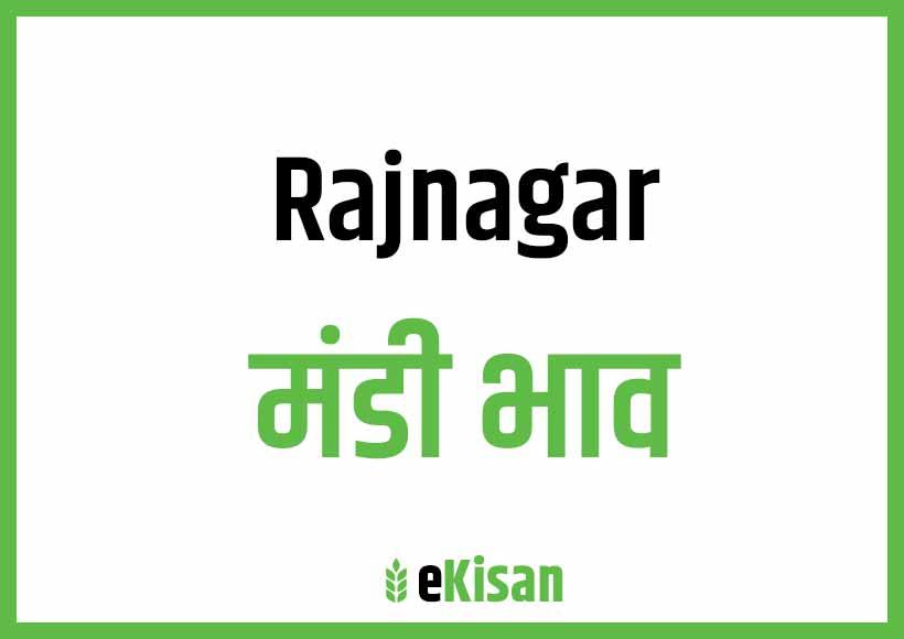 Rajnagar Mandi Bhav