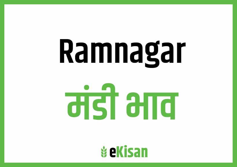 Ramnagar Mandi Bhav