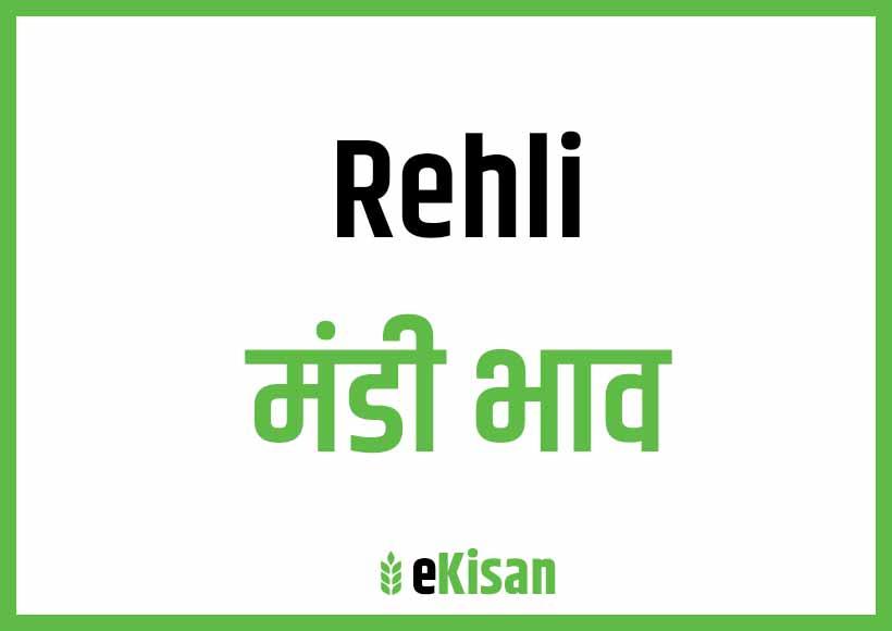 Rehli Mandi Bhav
