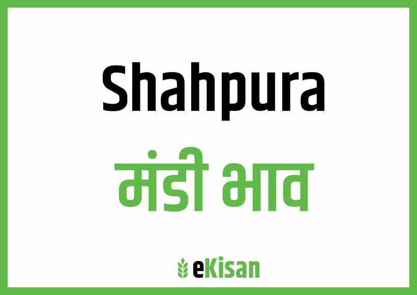 Shahpur Mandi Bhav
