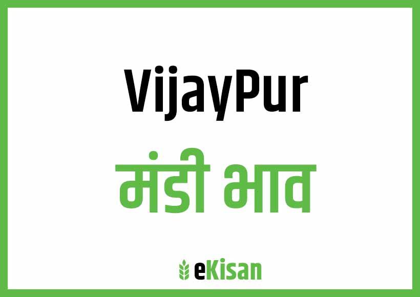 Vijaypur Mandi Bhav