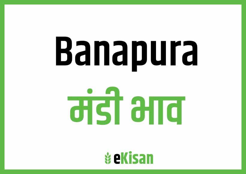 Banapura Mandi Bhav