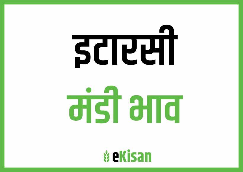 Itarsi Mandi Bhav