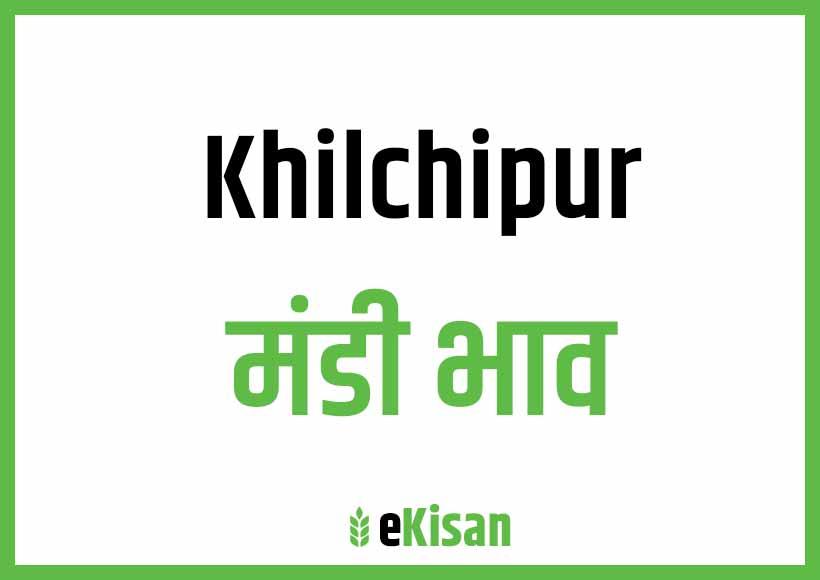 Khilchipur Mandi Bhav