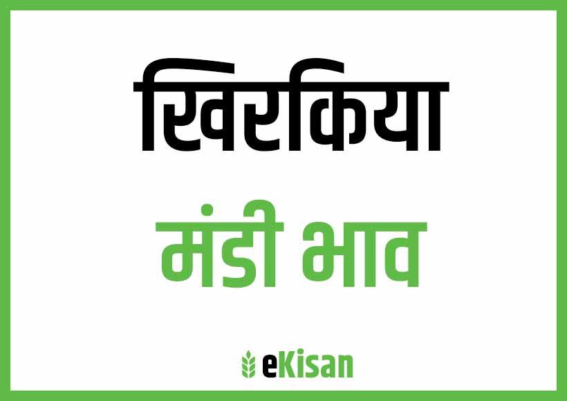 Khirkiya Mandi Bhav
