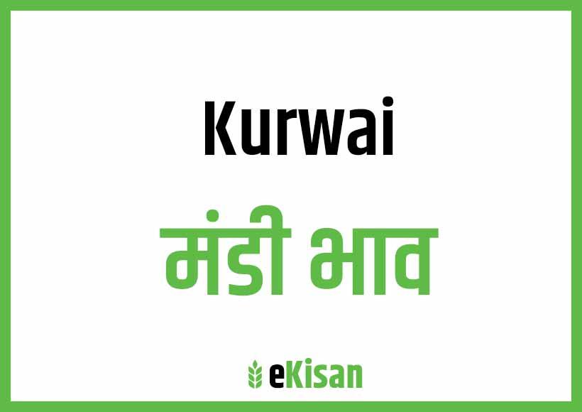 Kurwai Mandi Bhav