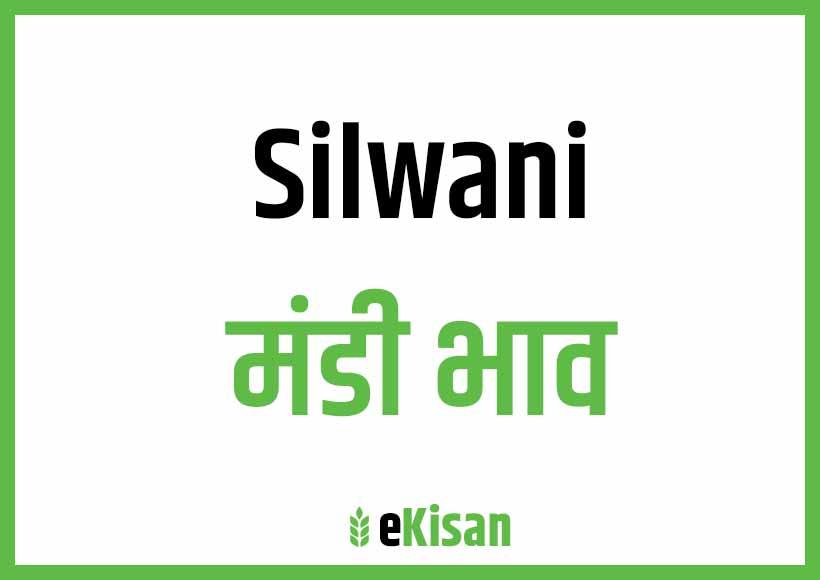 Silwani Mandi Bhav