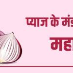 pyaj mandi bhav maharashtra