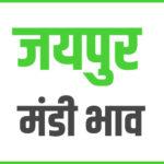 jaipur mandi bhav